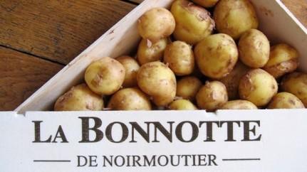 la-bonnotte